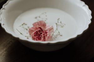 la bellezza di un fiore